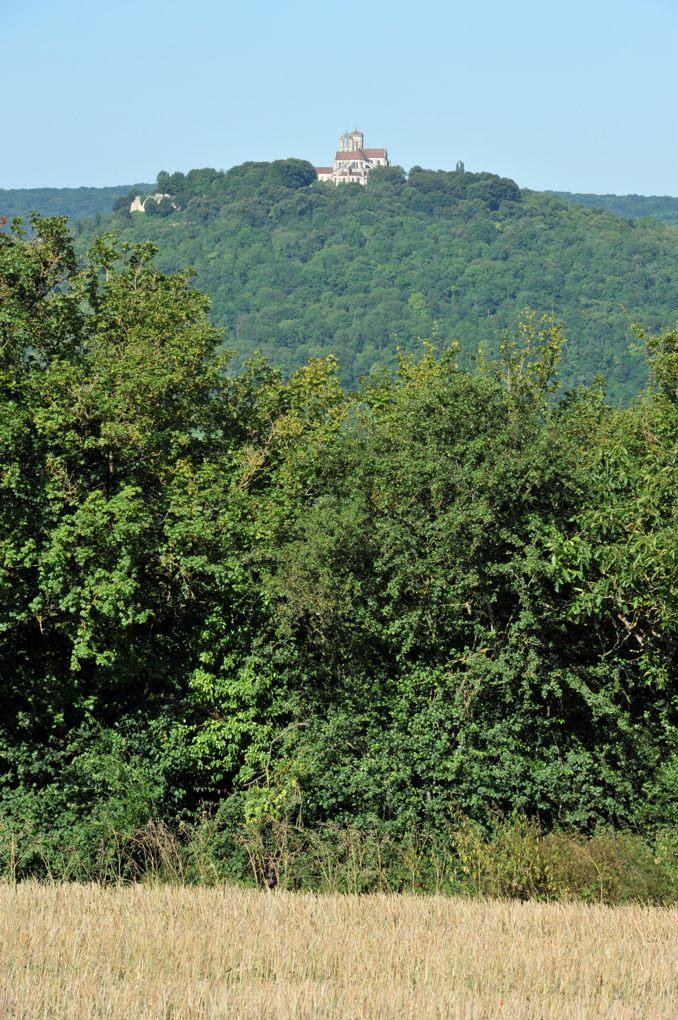 Vézelay - La colline boisée depuis le hameau de Fontette