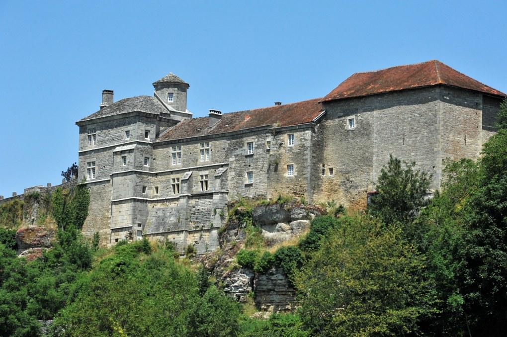 Salmaise - Le château (XIIIe-XIVe siècle)