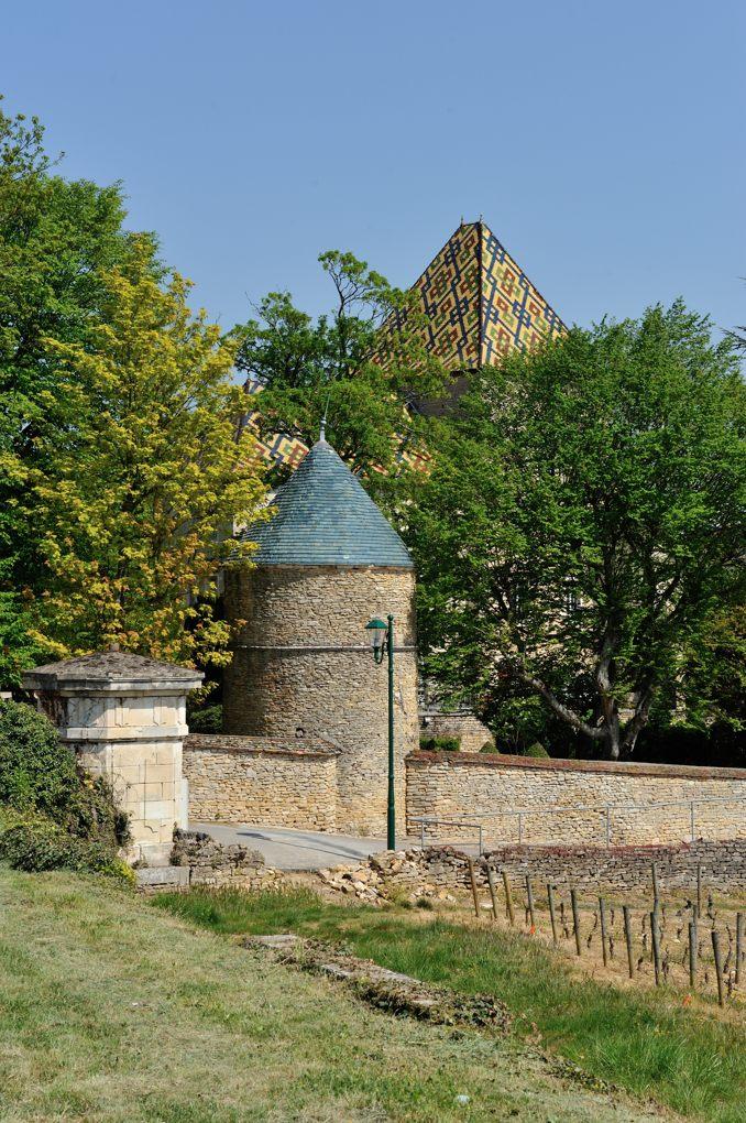 Santenay - Le château (XIIe-XIVe siècle)