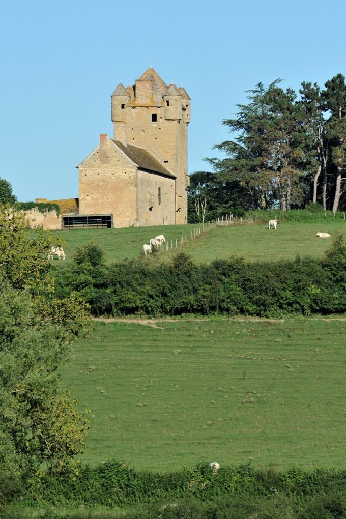 Changy - Le château (XVe siècle)