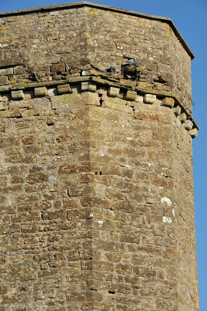 Thizy - Le château (XIIIe-XVIe siècle) : tourelle polygonal desservant les étages du donjon carré (XIVe siècle)