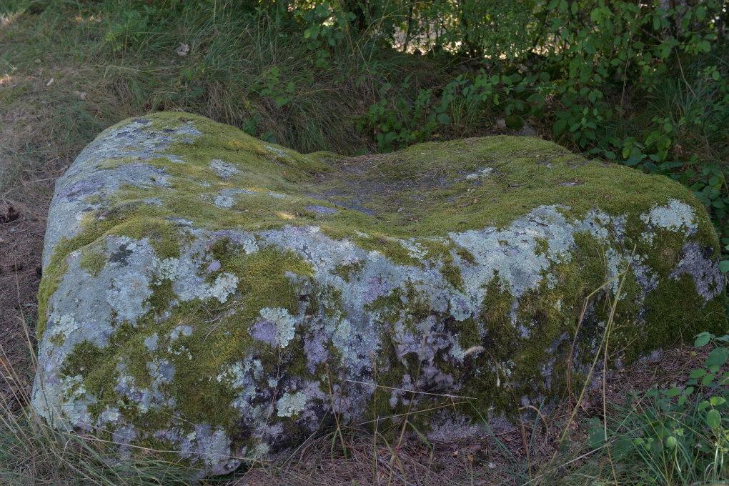 """Saint-Père-sous-Vézelay - Fontaines-Salées : le """"poron"""", mégalithe celtique en granit"""