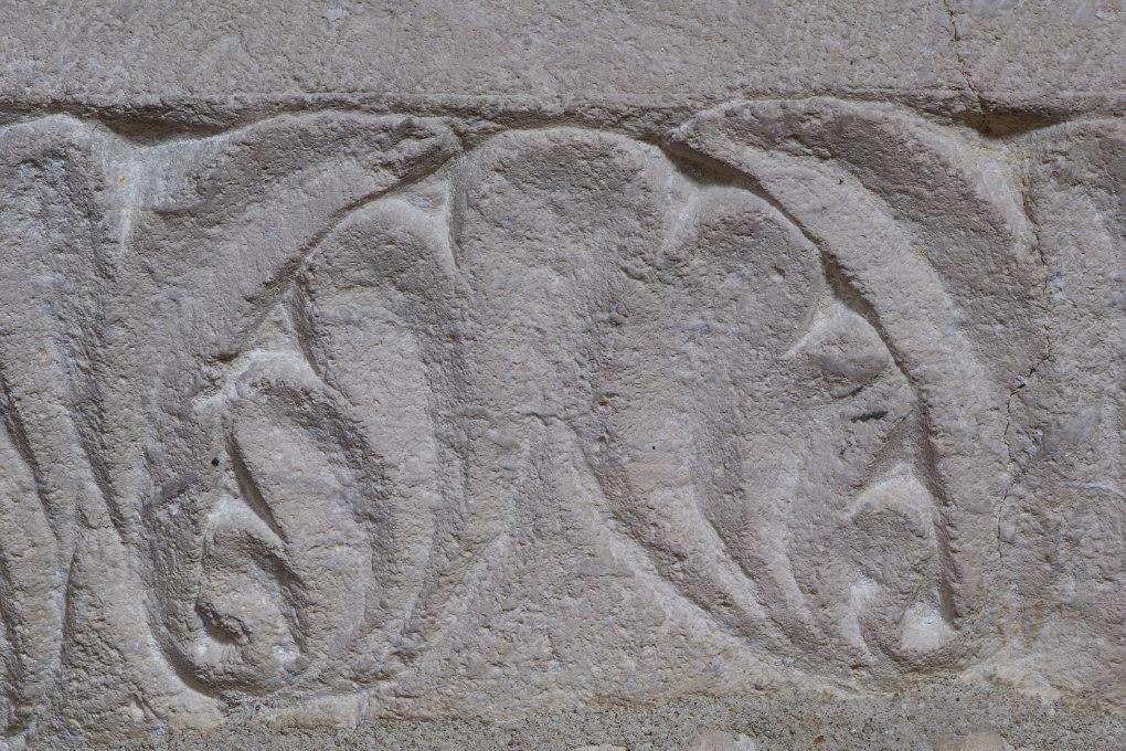 Sens - Basilique saint-Savinien (XIe et début XIIIe s.) - tailloir sculpté de motifs végétaux (fin XIe s.) : détail