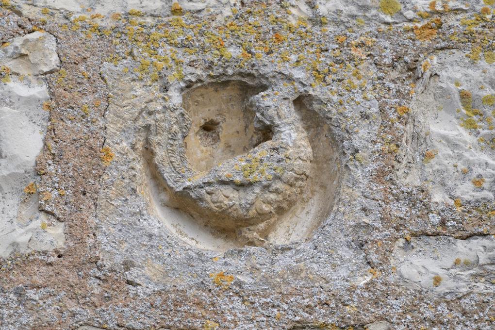 Vermenton - Eglise Notre-Dame (XIIe-XIVe s.) : animal hybride sculpté en façade (XIIe s.)